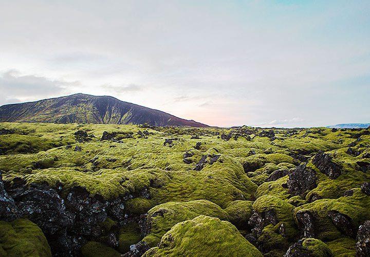 6 anledningar till att besöka Island