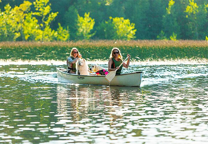 Paddla i Nordanstig – lugn, äventyr och naturupplevelse på en och samma gång