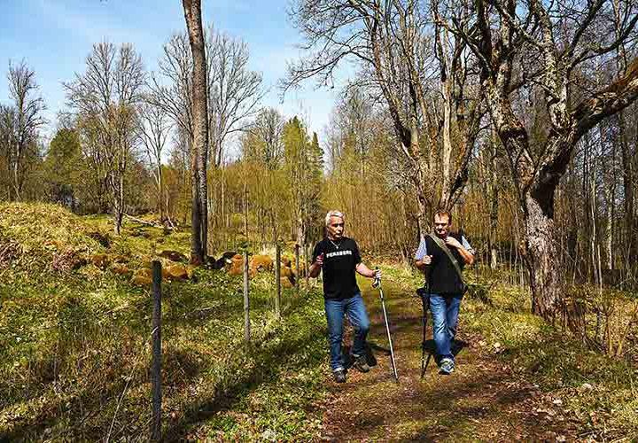 Alice Cooper startade folkvandring till Högbergsfältet
